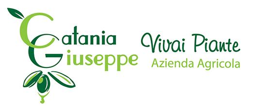 Vivai Catania